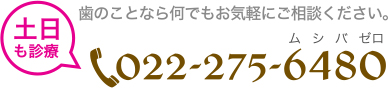 022-275-6480
